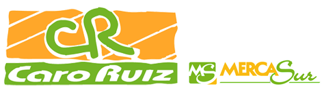 carorui-logo